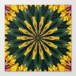 A Fanfare of Gaillardia Flowers Canvas Print