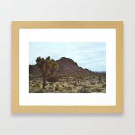 Joshua Trees Framed Art Print