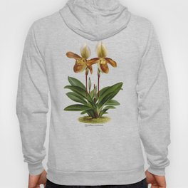 Cypripedium crossianum old plate Hoody