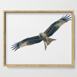 Red Kite Serving Tray
