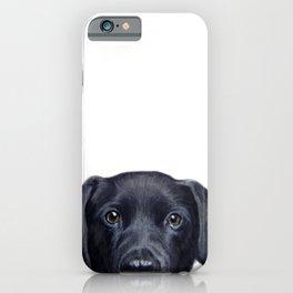 Labrador with white background Dog illustration original painting print iPhone Case