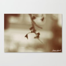 Intangible Canvas Print