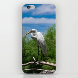 Great Egret Two - Utah iPhone Skin