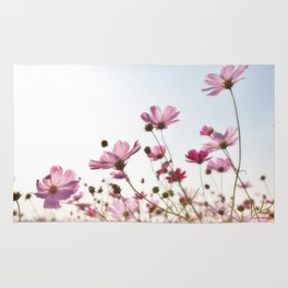 Pink Cosmos Rug