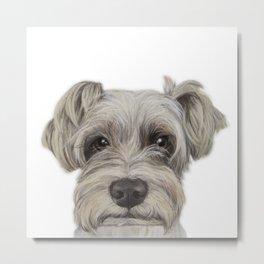 Rescue Dog series, Schnauzer mix, Kole by miart Metal Print