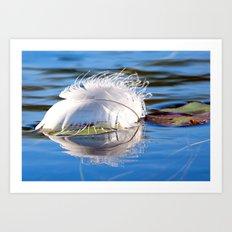 Swan Feather on Lake Art Print