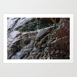 Ocean Weathered Natural Rock Texture with Barnacles Art Print