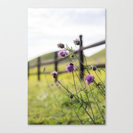 Bumblebee Flower Canvas Print