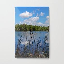 Florida's Edge Metal Print