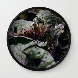 Close up of legume leafs in vegetable garden | Nature photography, botanical photography Wall Clock