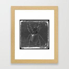 BLACK & WHITE  ANTIQUE STAG-HORNED BEETLE   PATTERNS  ART Framed Art Print