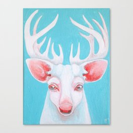 Portrait of a White Stag Canvas Print