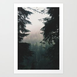 Forest IV Art Print