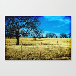 Along The Way In Clyde, Texas Canvas Print