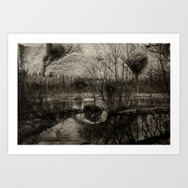 Bear Pond Art Print