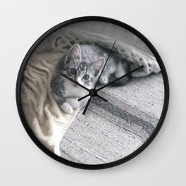 Our kitty on Quebec St. 03 Wall Clock