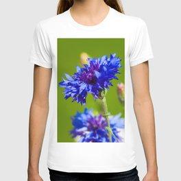 Blue cornflowers in summer T-shirt