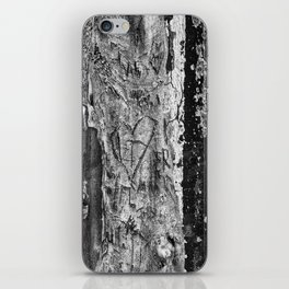 Carvings in Tree Trunk Gnarly Texture Pattern iPhone Skin