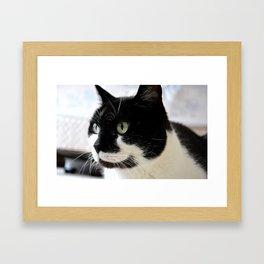 Sir Black and White Framed Art Print