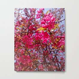 The First of Spring Metal Print
