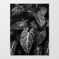 Jungle leaf - midnight Canvas Print
