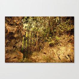 Vintage old secret door to the garden Canvas Print