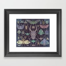 Entomologist's Wish (The Neon Version) Framed Art Print