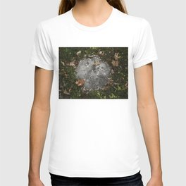 moon on the earth T-shirt