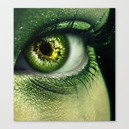 Kiwi Eye Canvas Print