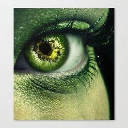 Kiwi Eye Canvas Print