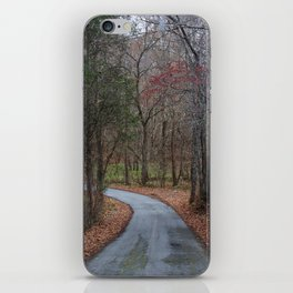 Traveling down the country lane iPhone Skin