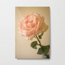 Dainty Rose Metal Print
