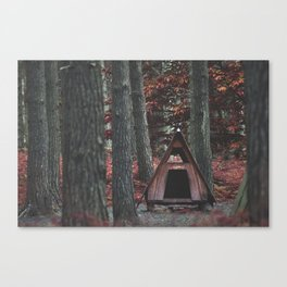Forest Hut - Nature Photography Canvas Print