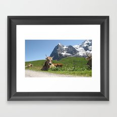Swiss Cow #2 Framed Art Print