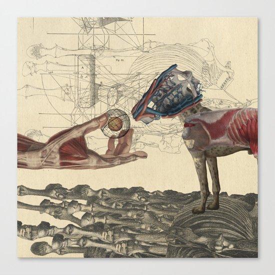 Canidae Canvas Print