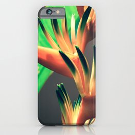 Costa Rican Beauty iPhone Case