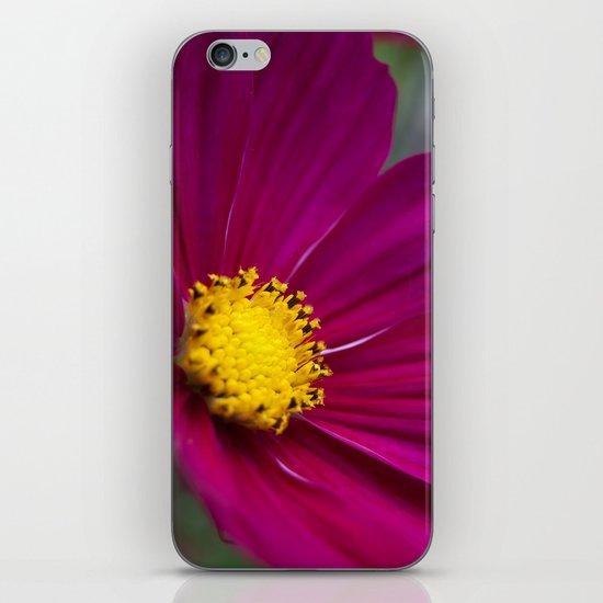 Cosmo iPhone & iPod Skin