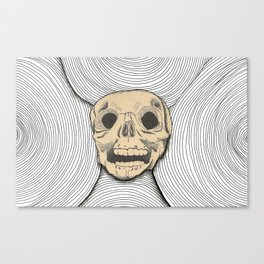 Skull Illusion  Canvas Print