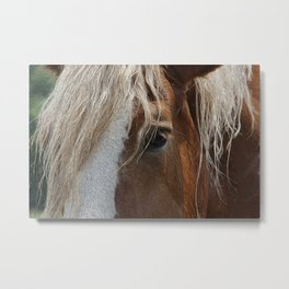 A Trusted Friend Metal Print
