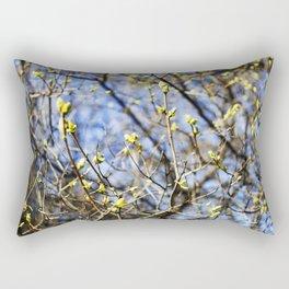 Nature Series: Spring Rectangular Pillow
