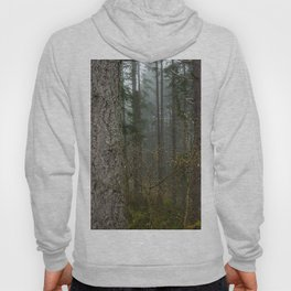 Pacfic Northwest Mountain Forest - 106/365 Landscape Photography Hoody