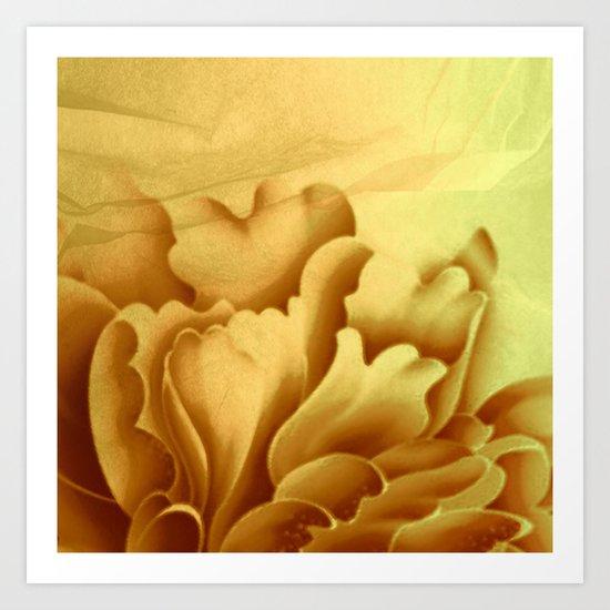 peach veiled flower Art Print