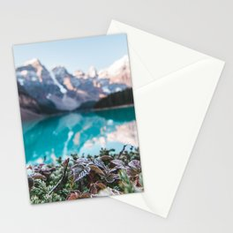 Canada Photography - Bush In Front Of Moraine Lake Stationery Cards