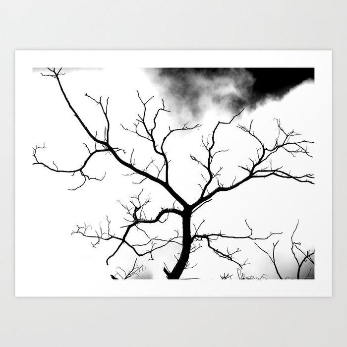 """White Tree"" Art Print"