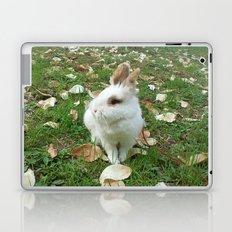 Spring of rabbit Laptop & iPad Skin