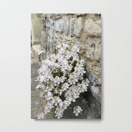 English Garden - Flowers from Stone Metal Print