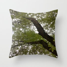 Tree and light III Throw Pillow