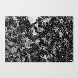 Texturized Pavement Canvas Print