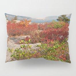 Dolly Sods Ruby Rockscape Pillow Sham