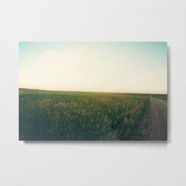 Country Roads (Rural South Dakota) Metal Print